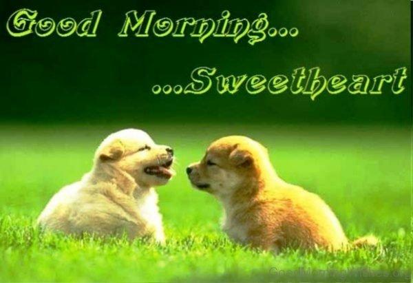 Good Morning Sweetheart 1