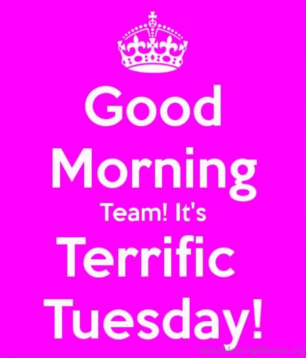 Good Morning Team Its Terrific Tuesday