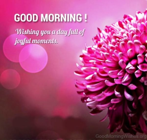 Good Morning Wishing You A Day Full Of Joyful Moments 1