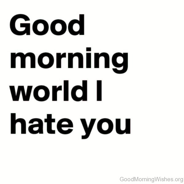 Good Morning World Hate You