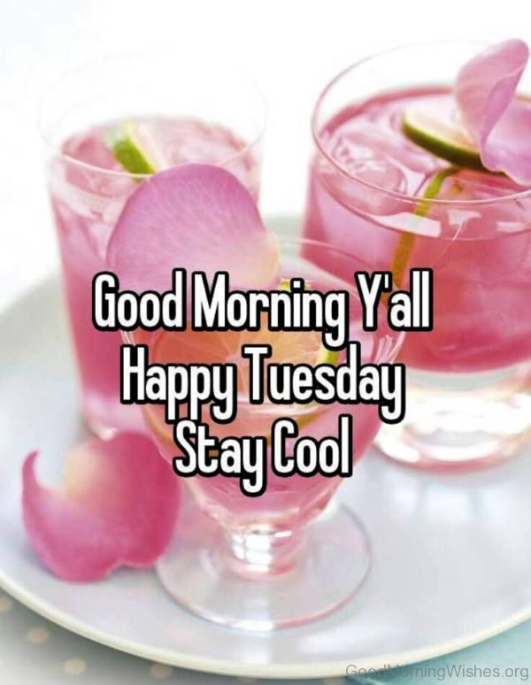Good Morning Yall Happy Tuesday Stay Cool