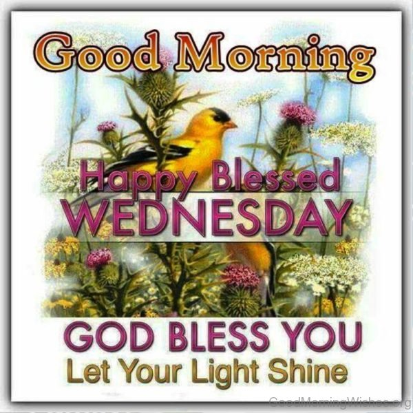 Good morning happy blessed wednesday