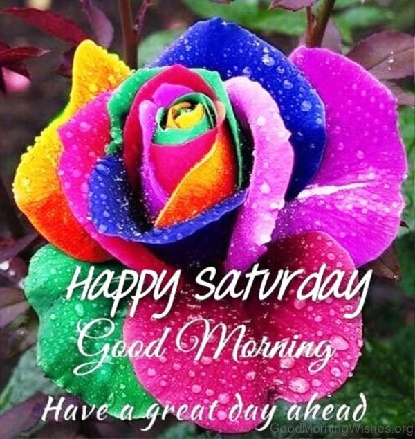 Happy Saturday Good Morning