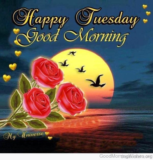 Happy Tuesday Good Morning