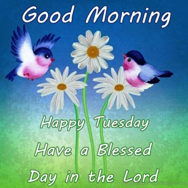Happy Tuesday Have A Blessed Day In The Lord