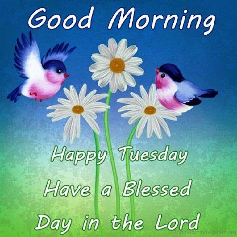 Image result for have a blessed tuesday