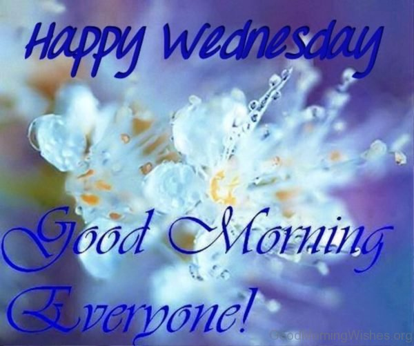 Happy wednesday good morning everyone
