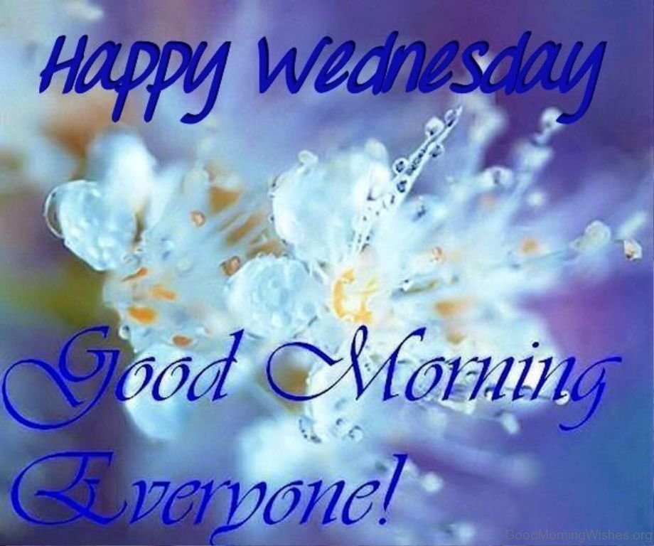 35 good morning wishes on wednesday happy wednesday good morning everyone m4hsunfo