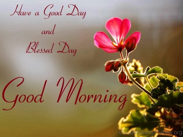 Have A Good Day And Blessed Day