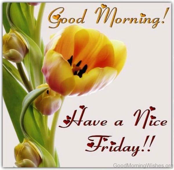 Good Morning Beautiful Happy Friday : Good morning beautiful friday