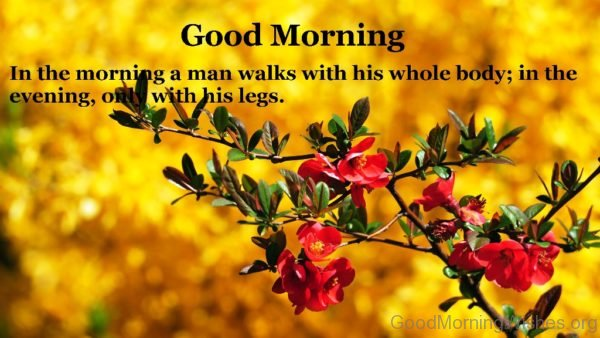 In The Morning A Man Walks With His Whole Body