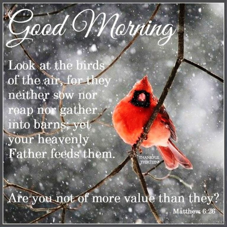 Morning Quote: 16 Winter Good Morning Quotes