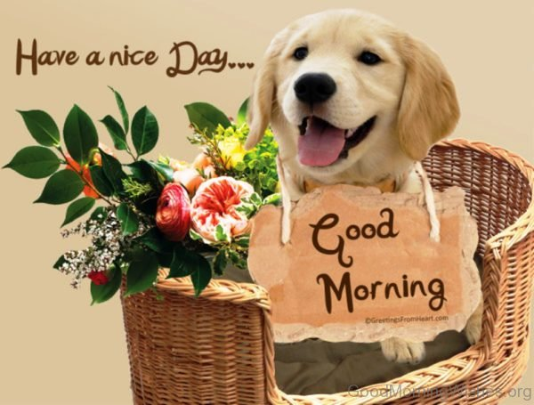 Lovely Good Morning Puppy Image
