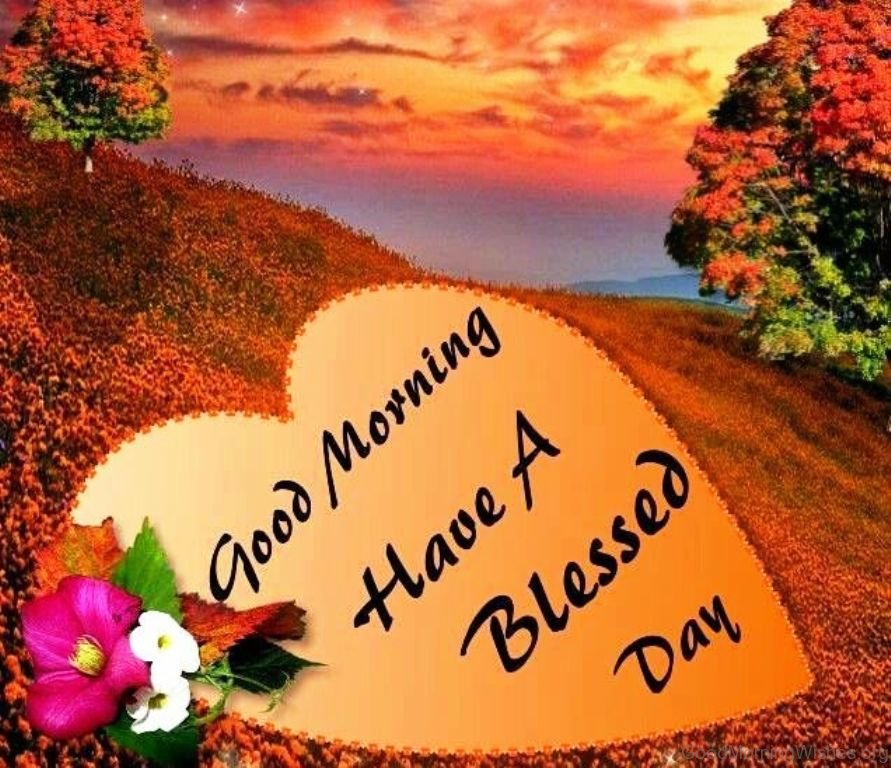 Blessed Day Quotes Extraordinary 48 Good Morning Have A Blessed Day Pics