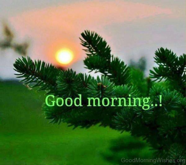 Lovely Pic Of Good Morning Sunrise