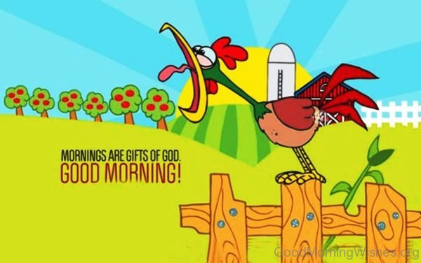 Mornings Are Gifts Of God