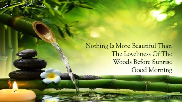 Nothing Is More Beautiful Than The Loveliness Of The Woods Before Sunrise Good Morning