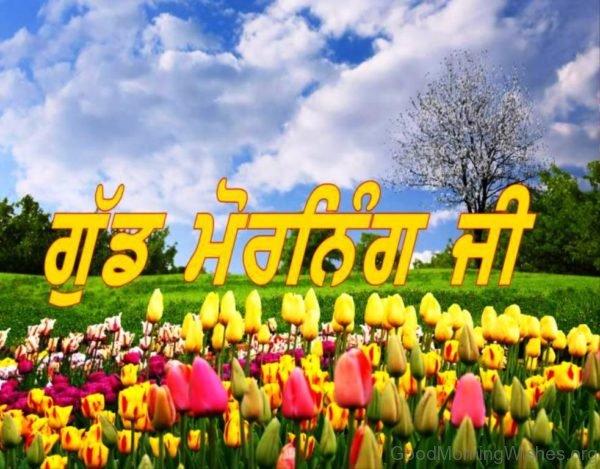 Punjabi Good Morning Images