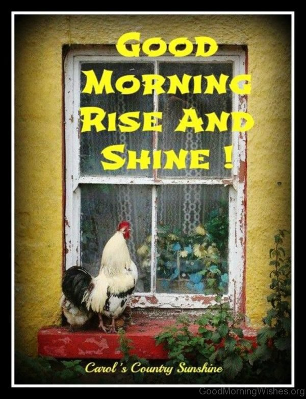 Stunning Pic Of Good Morning 3