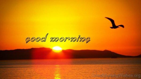Stunning Pic Of Good Morning Sunrise