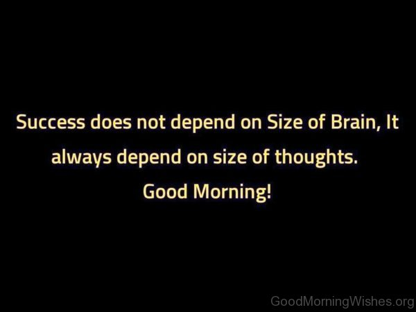 Success Does Not Depend On Size Of Brain