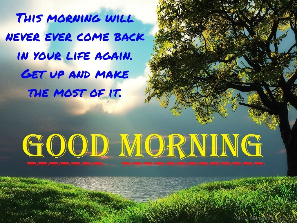 81 Good Morning Nature