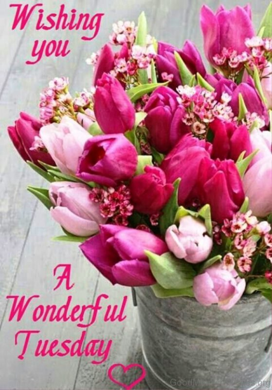 Wishing You A Wonderful Tuesday