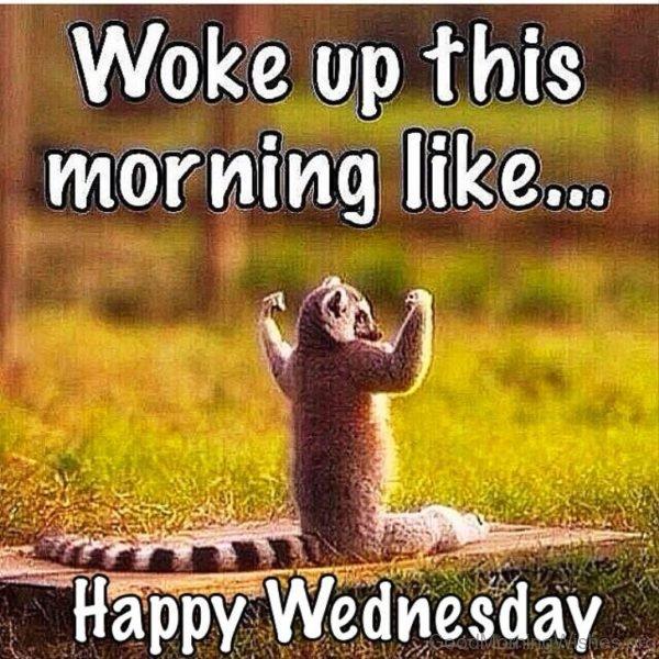Woke up this morning like happy wednesday