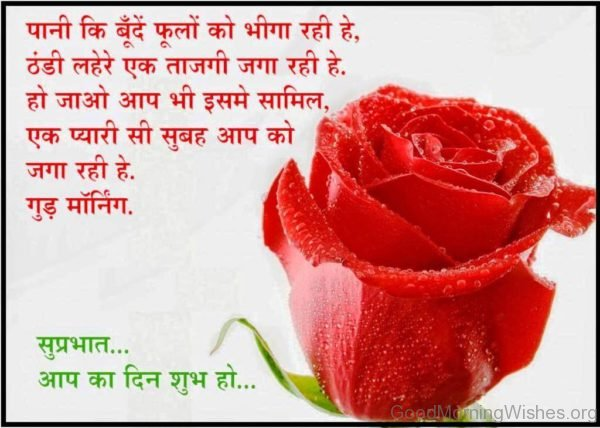 Wonderful Good Morning In Hindi