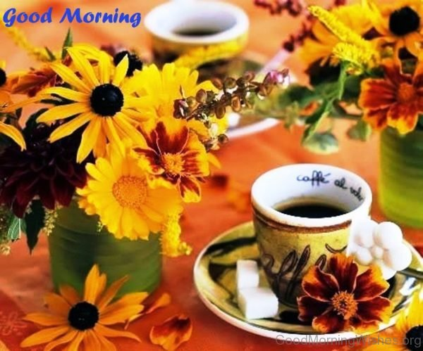 Wonderful Pic Of Good Morning Sunflowers